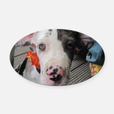 Dane Puppy Daisy Oval Car Magnet