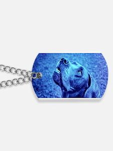 The Blue Dane Dog Tags