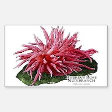 Hopkin's Rose Nudibranch Decal