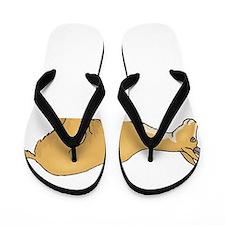 Antelope - Pronghorn 3 Flip Flops