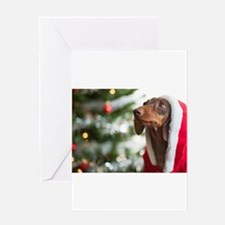 Santa Paws Greeting Cards
