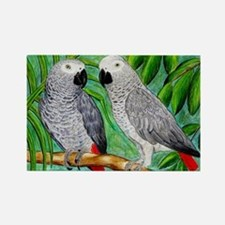 African Greys Rectangle Magnet