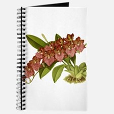 Vintage Orchid Journal