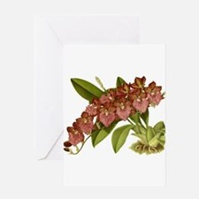 Vintage Orchid Greeting Cards