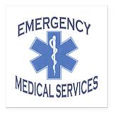 Ambulance Car Magnets