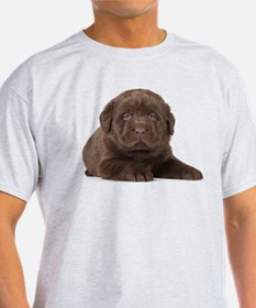 Chocolate Lab Puppy T-Shirt
