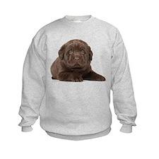 Chocolate Lab Puppy Sweatshirt