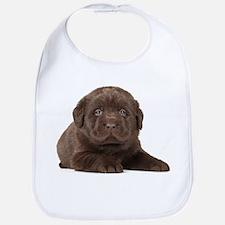 Chocolate Lab Puppy Bib
