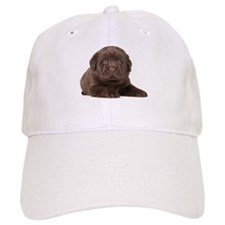Chocolate Lab Puppy Baseball Cap
