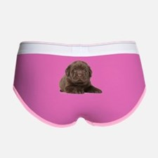 Chocolate Lab Puppy Women's Boy Brief