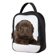 Chocolate Lab Puppy Neoprene Lunch Bag