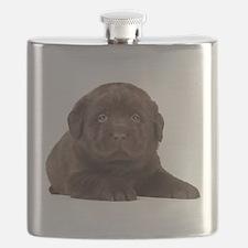 Chocolate Lab Puppy Flask
