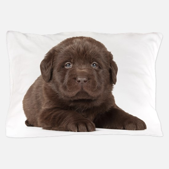 Chocolate Lab Puppy Pillow Case