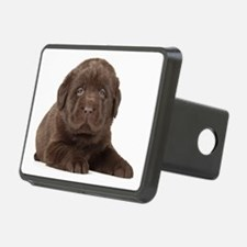 Chocolate Lab Puppy Hitch Cover