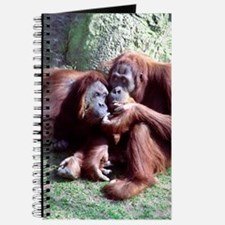 Sharing Orangs Journal