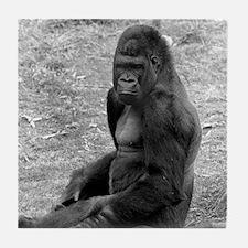 Adolescent Gorilla Tile Coaster