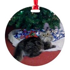 Christmas Persian Kitty Ornament