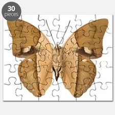 ARCHAEOPREPONA AMPHIMACHUS V Puzzle