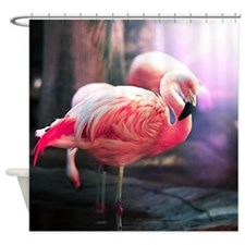 Beautiful Flamingo Shower Curtain