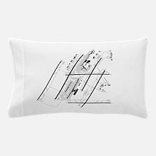 DTW Airport Pillow Case