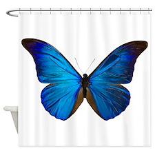 MORPHO RHETENOR D Shower Curtain