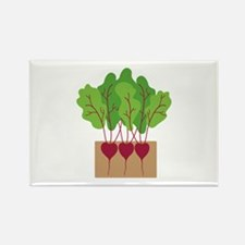 Beets Magnets