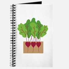 Beets Journal