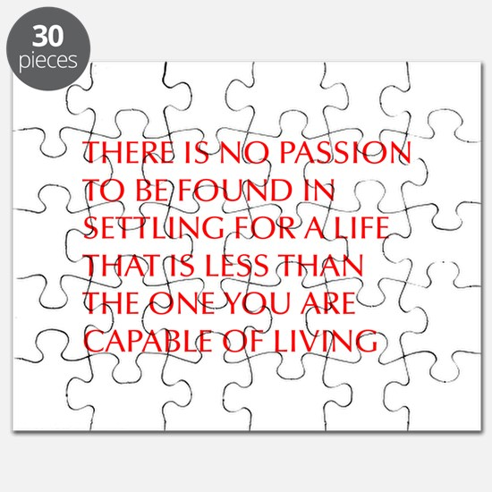there-is-no-passion Puzzle