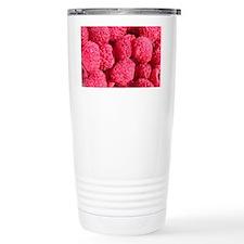 raspberry digital art Travel Mug