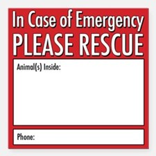 "Cute Dog rescue Square Car Magnet 3"" x 3"""