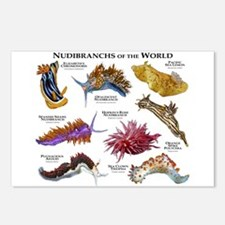 Nudibrachs of the World Postcards (Package of 8)