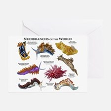 Nudibrachs of the World Greeting Cards (Pk of 10)