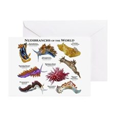 Nudibrachs of the World Greeting Cards (Pk of 20)