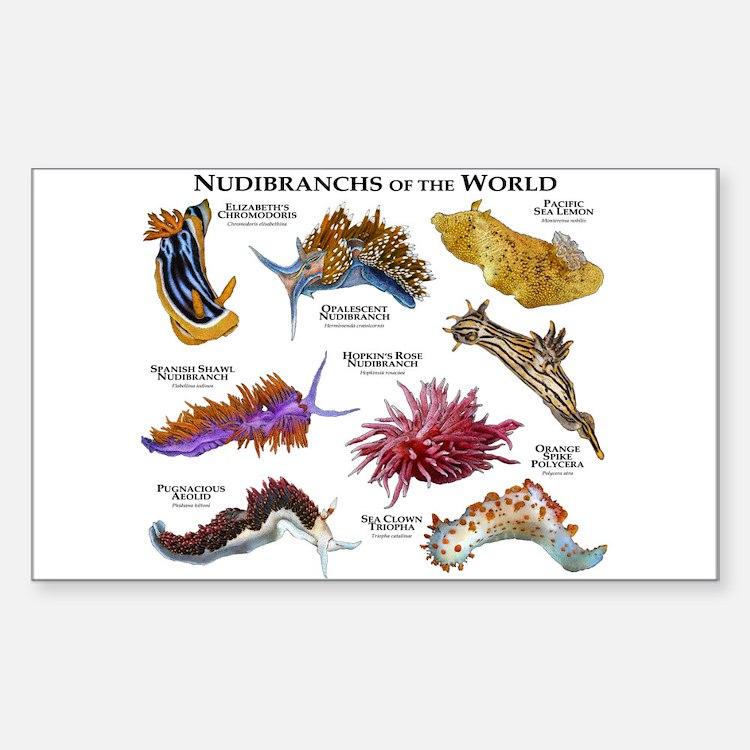 Nudibrachs of the World Decal