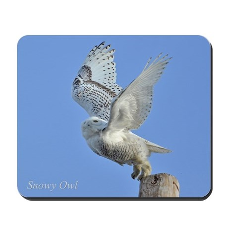 Snowy taking off Mousepad