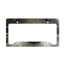 Raccoon Face License Plate Holder