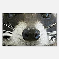 Raccoon Face Sticker (Rectangle)