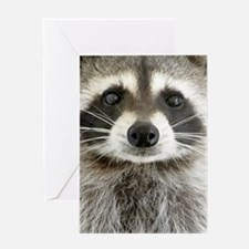 Raccoon Greeting Card
