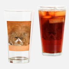 I Love Grumpy Persian Cats! Drinking Glass