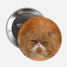 "I Love Grumpy Persian Cats! 2.25"" Button"