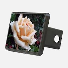 toronto peach rose  Hitch Cover