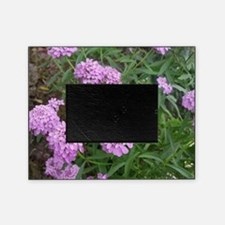 purple love Picture Frame