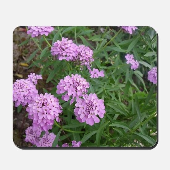 purple love Mousepad