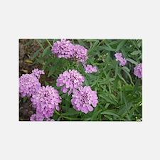 purple love Rectangle Magnet