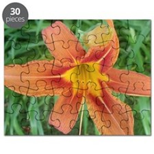 Big orange Puzzle