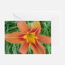 Big orange Greeting Card