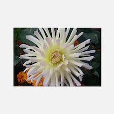 white beauty Rectangle Magnet