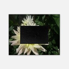 a row of white flowers Picture Frame