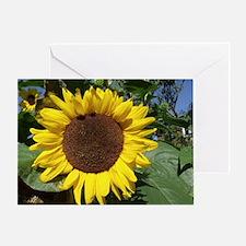 sunflower awake Greeting Card