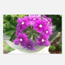 little purple bouquet Postcards (Package of 8)